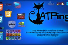 catping logo sticksORGINALmini